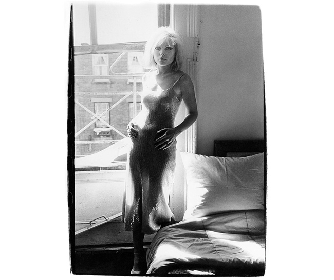 blondie-chrisstein_6